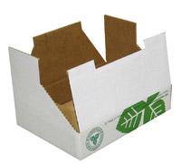 Дизайн потребительской упаковки — коробка